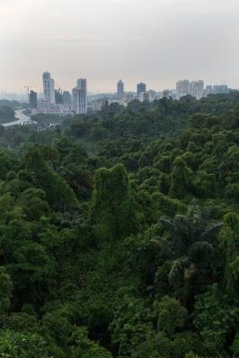 Singapore 2014-7