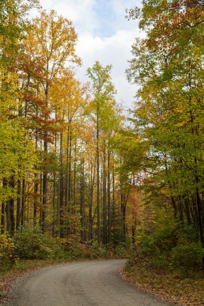 Last autumn-18